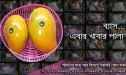 Photo Of Rajshahi Mango, VIP Smart Packeging, Chapai Nawabganj Mango Pack , Rajshahir Aam, Formalin Chemical Free Fozli (20)
